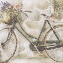 """Country - Bicycle"" от Flower Soft"