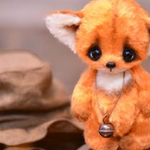 Little fox Findi