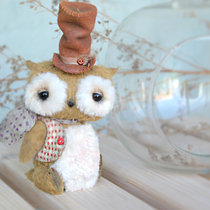 Mr. Bernard Owl (o, o)