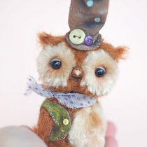 Mr Forest Owl (o, o)